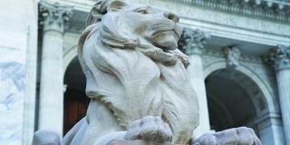 Statue of lion in front of library